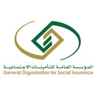 التأمينات الاجتماعية تعلن برنامج النخبة المنتهي بالتوظيف للرجال والنساء